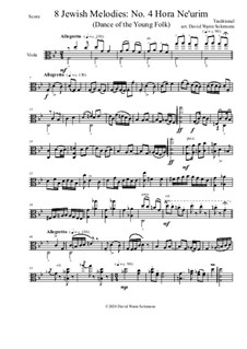 Hora Ne'urim (dance of the young folk): For viola solo by folklore