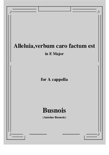 Alleluia, verbum caro factum est: E Major by Antoine Busnois