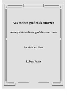 Zwölf Gesänge, Op.5: No.1 Aus meinen groβen Schmerzen, for Violin and Piano by Robert Franz