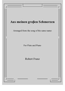 Zwölf Gesänge, Op.5: No.1 Aus meinen groβen Schmerzen, for Flute and Piano by Robert Franz