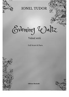 Evening Waltz: Vollpartitur und Stimmen by Ionel Tudor