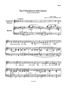 Ein Fichtenbaum steht einsam, S.309: Zweite Fassung by Franz Liszt