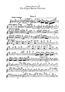 Der Zigeunerbaron: Ouvertüre – Flötenstimmen by Johann Strauss (Sohn)