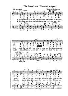 Die Stern' am Himmel singen: Die Stern' am Himmel singen by Ludwig van Beethoven