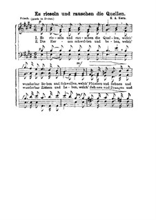 Es rieseln und rauschen die Quellen: Singpartitur by Karl August Kern