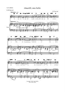 Amarilli, mia bella: E minor by Giulio Caccini