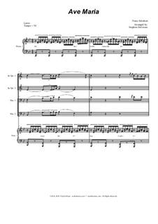 Ave Maria, D.839 Op.52 No.6: For Brass Quartet - Piano Accompaniment - Alternate Version by Franz Schubert