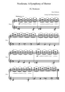 Nosferatu, eine Symphonie des Grauens: Teil IX by Hans Erdmann