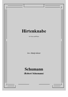 Hirtenknabe: C sharp minor by Robert Schumann