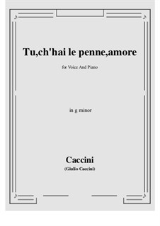 Tu, ch'hai le penne, Amore: G minor by Giulio Caccini