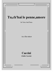 Tu, ch'hai le penne, Amore: A flat minor by Giulio Caccini
