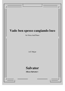 Vado ben spesso cangiando loco: E Major by Salvator Rosa