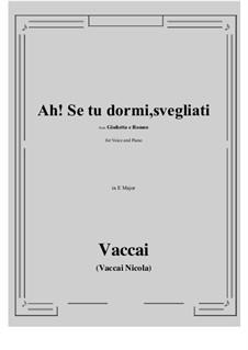 Julia und Romeo: Ah! Se tu dormi, svegliati (E Major) by Nicola Vaccai