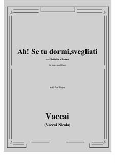 Julia und Romeo: Ah! Se tu dormi, svegliati (G flat Major) by Nicola Vaccai