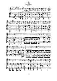 Nr.12 Am Meer: Für Stimme und Klavier by Franz Schubert