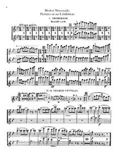 Vollständiger Zyklus: Für Orchester – Flötenstimmen by Modest Mussorgski