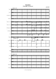 Freedom (Full BBC Orchestra): Freedom (Full BBC Orchestra) by Jordan Grigg