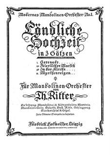 Ländliche Hochzeit in 3 Sätzen: Ländliche Hochzeit in 3 Sätzen by Theodor Ritter