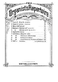 Sechs Stücke für Violinе und Klavier, Op.85: Nr.3 Kavatine. Version für Orgel by Joachim Raff