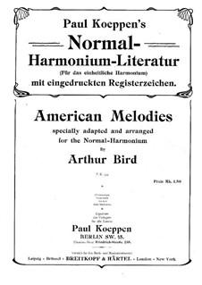 Amerikanisch Melodien: Amerikanisch Melodien by folklore