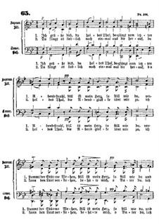 Ich grüsse dich: Ich grüsse dich by Franz Wilhelm Abt