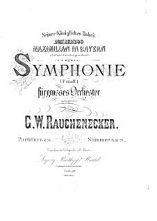 Sinfonie Nr.1 in f-Moll: Teil I by Georg Wilhelm Rauchenecker