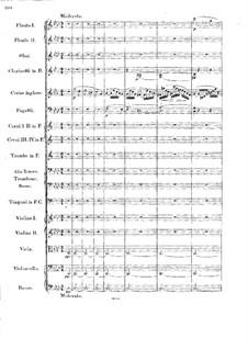 Sinfonie Nr.1 in f-Moll: Teil IV by Georg Wilhelm Rauchenecker