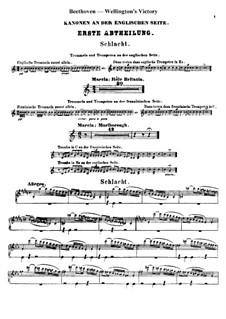Wellingtons Sieg, oder die Schlacht bei Vittoria, Op.91: Schlagzeugstimmen (Englischen Seite) by Ludwig van Beethoven