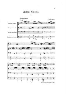 Hortus Musicus. Sonaten und Suiten für Streicher und Basso Continuo: Sonate und Suite Nr.1 in a-Moll by Johann Adam Reincken