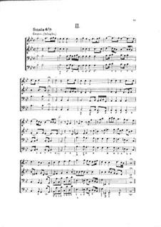 Hortus Musicus. Sonaten und Suiten für Streicher und Basso Continuo: Sonate und Suite Nr.2 in B-Dur by Johann Adam Reincken