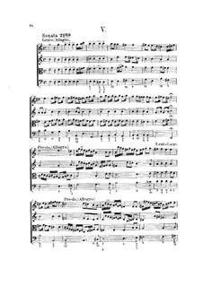 Hortus Musicus. Sonaten und Suiten für Streicher und Basso Continuo: Sonate und Suite Nr.5 in e-Moll by Johann Adam Reincken