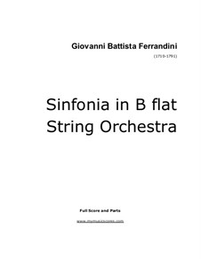 Sinfonia for String Orchestra: Sinfonia for String Orchestra by Giovanni Battista Ferrandini