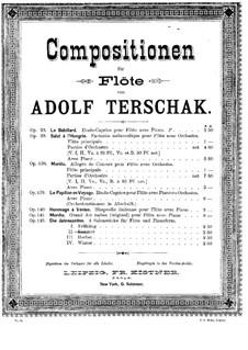 Die Jahreszeiten, Op.143: Sommer für Flöte und Klavier by Adolf Terschak