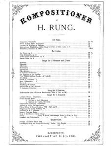 Det Svundne og det Vundne: Det Svundne og det Vundne by Henrik Rung