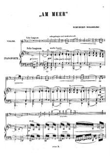 Nr.12 Am Meer: Für Violine und Klavier by Franz Schubert