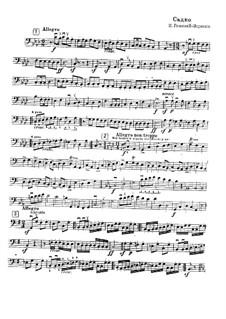 Sadko. Opera: Fragment aus Kontrabassstimme by Nikolai Rimsky-Korsakov