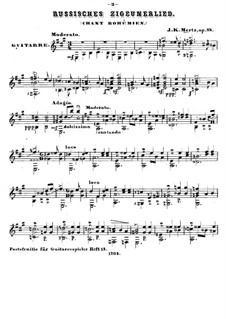 Russisches Zigeunerlied, Op.88: Für Gitarre by Johann Kaspar Mertz