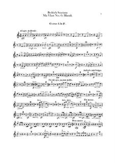 Blanik, T.121: Hörnerstimmen by Bedřich Smetana
