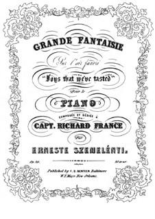 Grosse Fantasien für Klavier, Op.26: Fantasie über 'Joys that We've Tasted' by Ernest Szemelényi