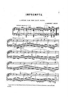 Impromptu. Studie für die linke Hand: Für einen Interpreten by Joseph Humfrey Anger