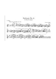Teil IV: Flöte I Solo Stimme by Antonín Dvořák
