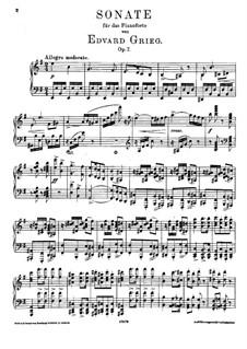 Sonate für Klavier in e-Moll, Op.7: Für einen Interpreten by Edvard Grieg