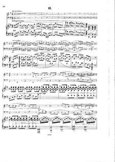 Klaviertrio Nr.2, Op.65: Teil II by Hans Huber