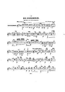 Fantasie über Thema aus 'Die Zigeunerin' von Balfe, Op.17: Fantasie über Thema aus 'Die Zigeunerin' von Balfe by Johann Kaspar Mertz