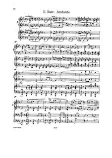 Sinfonie Nr.4 in Es-Dur 'Romantische', WAB 104: Teil II. Bearbeitung für zwei Klaviere, vierhändig by Anton Bruckner