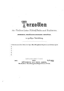 Divertissement über Thema aus 'Der Prophet' von Meyerbeer, Op.32: Divertissement über Thema aus 'Der Prophet' von Meyerbeer by Johann Kaspar Mertz