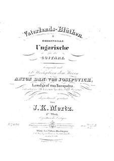 Vaterland-Blüthen, Op.1: Für einen Interpreten by Johann Kaspar Mertz