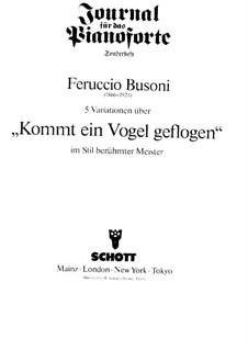 Fünf Variationen über 'Kommt ein Vogel geflogen' für Klavier: Fünf Variationen über 'Kommt ein Vogel geflogen' für Klavier by Ferruccio Busoni