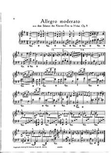 Klaviertrio Nr.1 in H-Dur, Op.8: Teil II (Fragment). Version für Klavier by Johannes Brahms