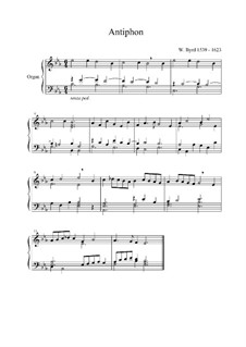 Antiphon für Orgel: Antiphon für Orgel by William Byrd